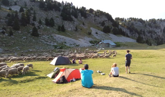 Séjours de randonnée et tourisme entre vercors et pays de savoie